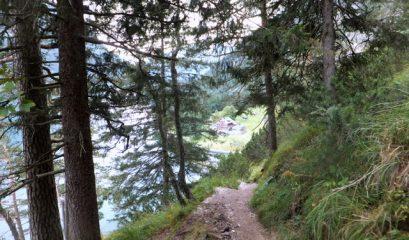 מסלול הליכה מיוחד במינו לאורך אגם אכנזה (Achensee)