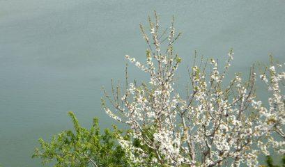 טבע וחקלאות – תשעה יעדים שכדאי לראות